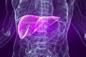 transaminasi ast o got: due modi di definire l'enzima epatico