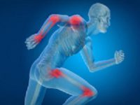 ruolo-della-vitamina-b6-nei-sistemi-enzimatici