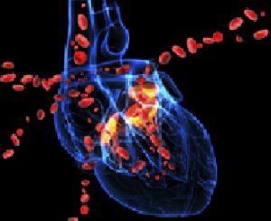 biomarcatori cardiaci