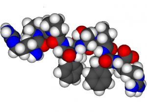 bradichinina