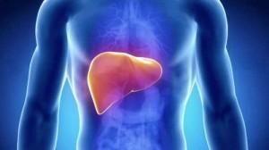 tumore al fegato funzionalità epatica