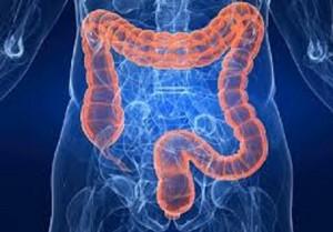 transaminasi colon irritabile
