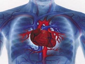 troponina cardiaca