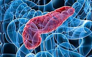 lipasi pancreatiche